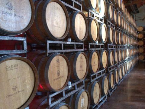Investice do vína, umění nebo půdy. Ito nabízejí fondy kvalifikovaných investorů
