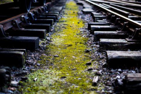 Vrací se investice do starých kolejí? Trnitá cesta nemusí být na škodu