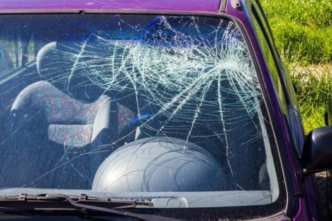 Co si ohlídat upojištění auta, nejen na podzimních silnicích?