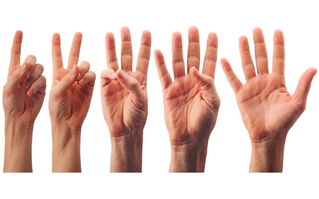 Ruce v 5 bodech