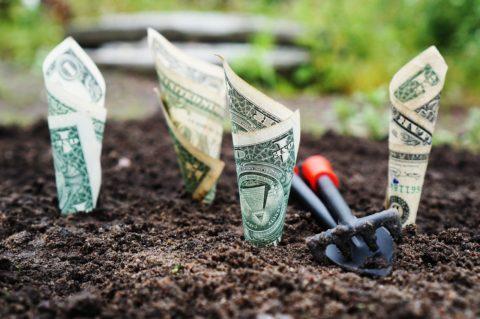 Investiční portfolio: Co zařadit?