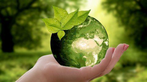 Souboj společností odosažení nulových emisí
