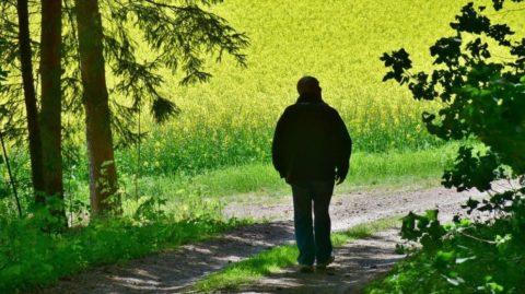 Do penze již v60 letech? Pomůže předdůchod