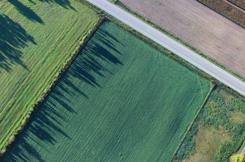 HB Index: Pozemky meziročně zdražily téměř opětinu